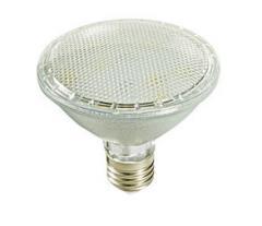 120/230V PAR30 IP65 4W LED Lamp