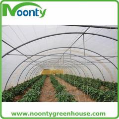 Single Tunnel Greenhouse