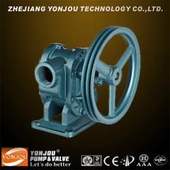 Belt Pully Gear Pump (BP)