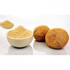 500g Top Quality Lion's Mane Mushroom/