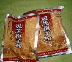 250g Po Bi Lingzhi Bozi98% Broken Ganoderma