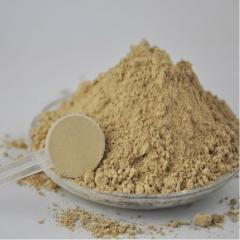 500g Top Quality Pure Natural Angelica Sinensis