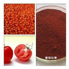 50g Natural Extract Top Quality Antioxidant