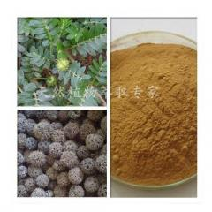 100g Natural Tribulus Terrestris Extract 80%