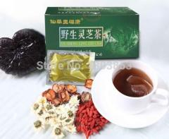 Chinese herbs tea ganoderma (reishi) tea organic