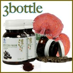 Wholesale 3 bottle reishi capsules chinese herbs