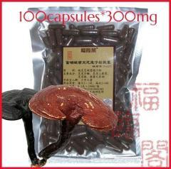 Ganoderma spore powder capsules / reishi spore