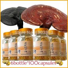 6bottle Ganoderma spore oil / reishi  spore oil