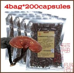 4bag ganoderma lucidum / ganoderma capsules