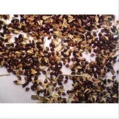 500g Fallopia Multiflora Seeds,He Shou Wu