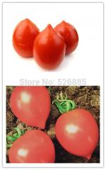 Red peach tomatoes, tomato seeds, fruits and