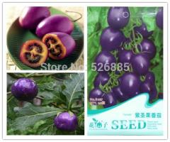Purple holy fruit tomato, purple tomato seeds,