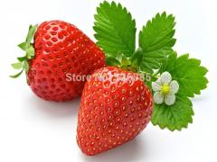 Strawberry seeds, Four Seasons planting seeds