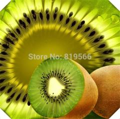 90pcs Chinese Gooseberry fruit Seeds Succulent