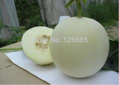 Sugar pot seeds, muskmelon, easy to grow sweet
