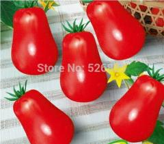 Free shipping red Luo tomatoes, tomato seeds,