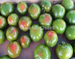 Free Shipping Green A Little Red Tomato Seed,