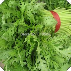 300pcs Green Mini leaf garland chrysanthemum