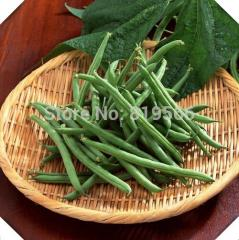 5pcs Chinese String beans vegetables seeds indoor