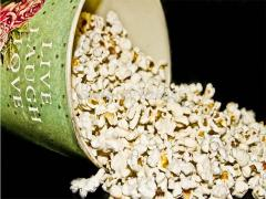 Burst rice flower, seed corn,  can  popcorn - 30