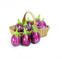 Eggplant, Colorful Pretty Eggplant Seeds,