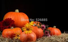 Sweet pumpkin, winter squash, Pumpkin vegetable