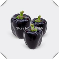 100pcs Purple Bell Peppers vegetables seeds Sweet