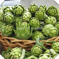 4pcs Artichokes vegetables seeds indoor home