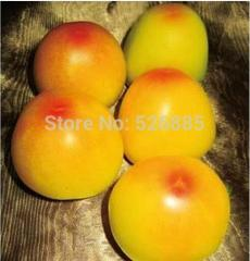 Free Shipping Yellow Tomato with Red Bottom