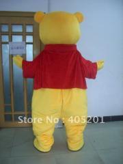 Custom winnie costumes