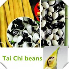 20pcs Chinese Taichi  Bean vegetables seeds indoor