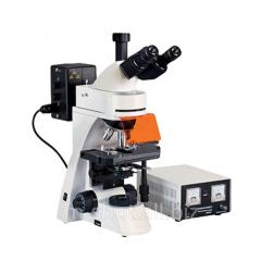 ניאון מיקרוסקופים