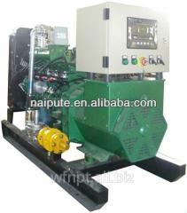 LPG generator soundproof 10-300 kW