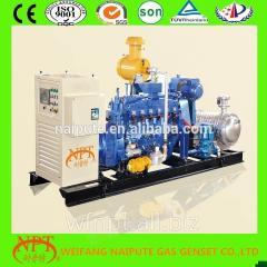 10-500 kW biogas generator