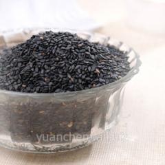 Semillas de sésamo negro tostado