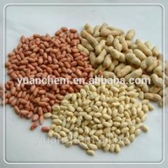 Chinese round shape peanut kernels