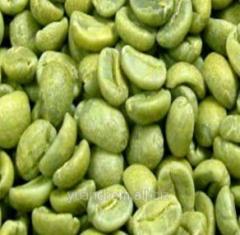 Зеленый кофе в зернах (хлорогеновая кислота)