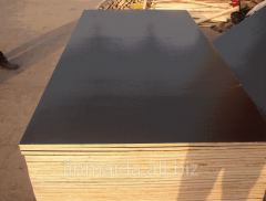 18mm thick Water Proof Construction Plywood/Film