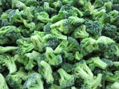 IQF BROCCOLI FROZEN BROCCOLI Брокколи Iqf ЗАМОРОЖЕННЫЕ БРОККОЛИ