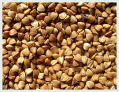 Roasted Buckwheat Kernels