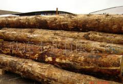 松杉建筑木方木方料,原木及板材