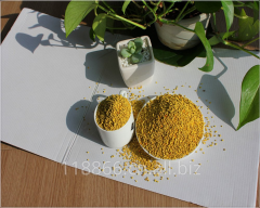 China Bee Pollen Granules