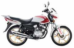 Motorcycle Super Storm 新超级锐箭 (SDH125-52/52A)