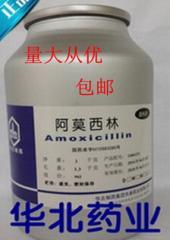 Amoxicillin drug