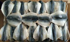 Mackerel flap(Makrela filety  )80g+ ,100% n.w.,20KG/CTN,BQF skype tzjudy