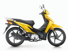 Cub Motorcycle Plim (SDH110-16A)