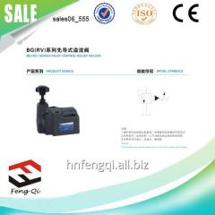 BG hydraulic valve pilot operated relief valve