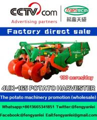 The best choice for farmers,4UX-165 Potato