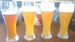 啤酒、饮料等设备
