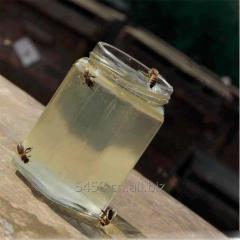 100% 纯天然洋槐蜜